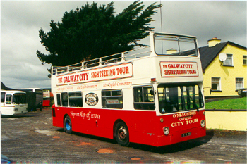 Galway Red Bus Tour